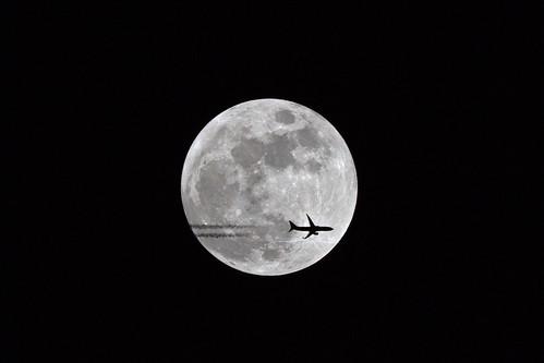 ai_plane_001